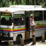Nimbin Bus